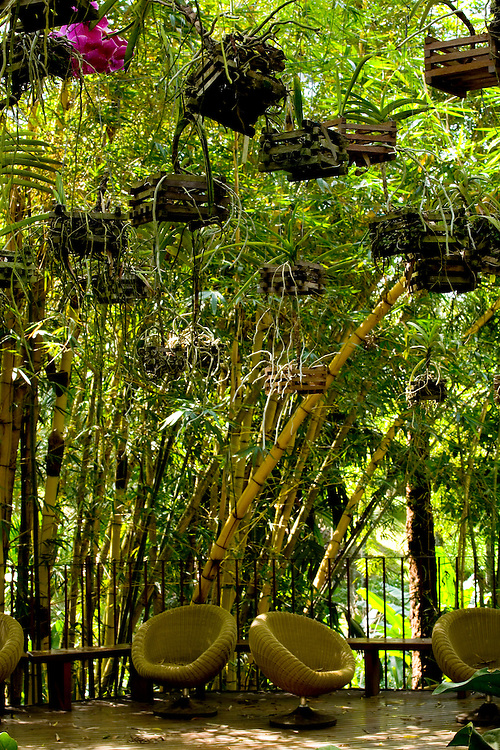 Brumadinho_MG, Brasil...Centro de Arte Contemporanea Inhotim (CACI)...The Inhotim Contemporary Art Center (CACI)...Foto: LEO DRUMOND / NITRO..