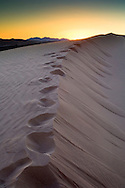 Footprints in sand dune at sunrise, North Algodones Dunes Wilderness, Imperial County, California
