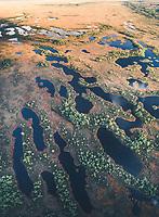 Aerial view of beautiful blue swamp in Estonia.