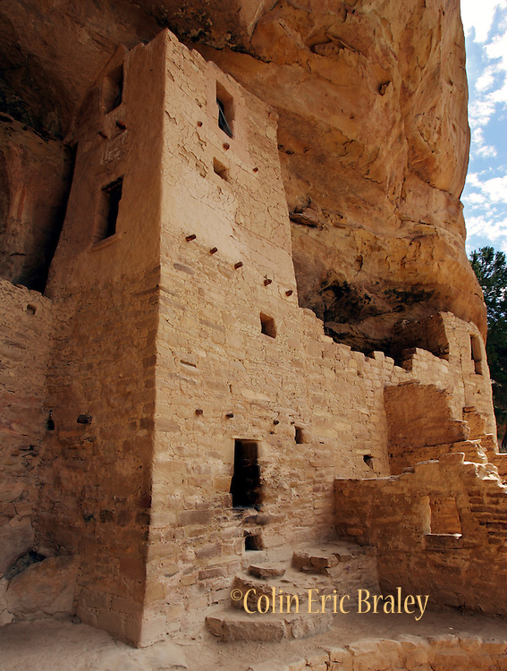 One of the towers of the Cliff Palace ruins reaches to the top of the cliff overhang at Mesa Verde National Park in Colorado. Colin Braley/Wild West Stock