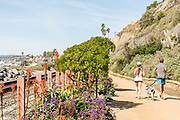 Couple Running Their Dog on the San Clemente Beach Trail