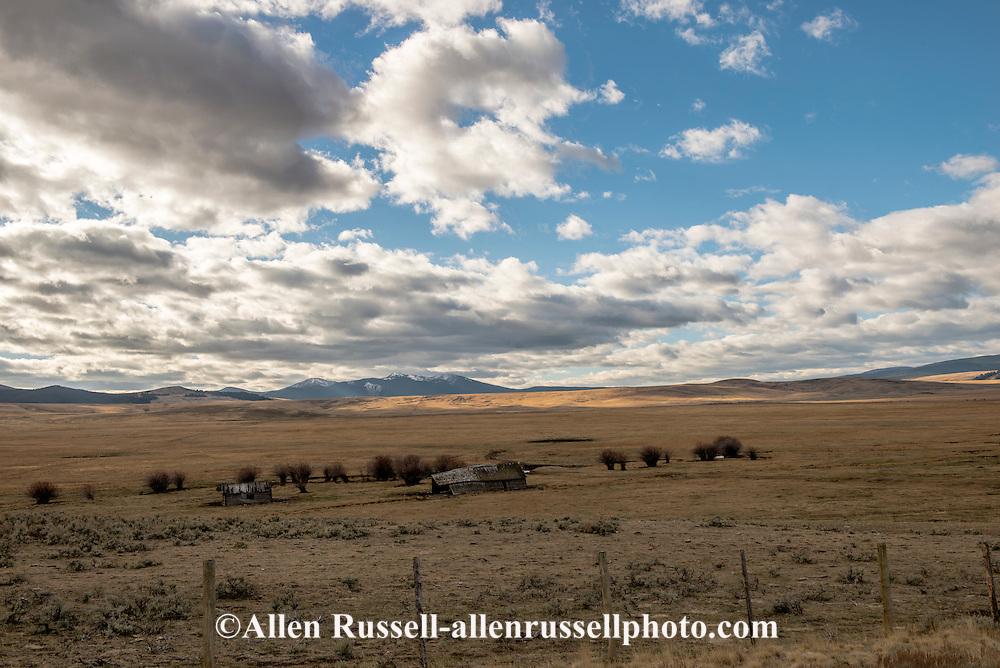Big Hole Valley, Land of 10,000 Haystacks, old cabin and barn, Bitterroot Range, Southwest Montana