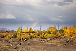 """Autumn thunderstorm an rainbow in Jackson Hole Wyoming<br /> <br /> For production prints or stock photos click the Purchase Print/License Photo Button in upper Right; for Fine Art """"Custom Prints"""" contact Daryl - 208-709-3250 or dh@greater-yellowstone.com"""