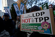 A woman holds a sign saying she voted for the ruling LDP so that they wouldn't join the TPP at an Anti TPP (Trans Pacific Partnership) protest in Hibiya Park, central Tokyo. Japan. Sunday December 8th 2013 About 2,00 people took part in a rally and demo starting in Hibiya Park and finishing in Ginza to protest the government's plans to join this trade partnership with America and other Pacific nations