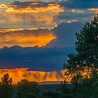 The sun sets behinds cottonwood trees and a fading rain squall on the American Prairie Reserve in Montana.