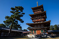 8. Yakushiji Temple 薬師寺 was constructed by Emperor Tenmu in the 7th century for the recovery of the emperor's sick wife. Yakushiji is one of Japan's oldest temples and is laid out on a central axis flanked by two pagodas. The main hall was rebuilt in the 1970s after being destroyed by fire and houses a Yakushi trinity - considered to be a masterpiece of Japanese Buddhist art. The East Pagoda is the temple's only structure to have survived the many fires that have destroyed the temple repeatedly over the years.  It appears to have six stories, but there are really only three stories, in symmetry with the West Pagoda. The East Pagoda, the only building to have survived since the 8th century, is considered to be a masterpiece of Japanese architecture.