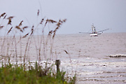 A shrimp boat trawls off the beach of Sullivan's Island, SC.