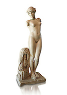 """Roman marble statue of the Esquiline Venus or Aphrodite dated to the 1st cent. It was found in 1874 in Piazza Dante on the Esquiline Hill in Rome, probably part of the site of the Horti Lamiani, one of the imperial gardens, rich archaeological sources of classical sculpture. The Esquiline Venus is an example of the Pasitelean """"eclectic"""" style of the Neo-Attic school. It combines elements from a variety of other previous schools - a Praxitelean idea of the nude female form; a face, muscular torso, and small high breasts in the fifth-century BC severe style; and pressed-together thighs typical of Hellenistic sculptures. Capitoline Museums, Rome"""