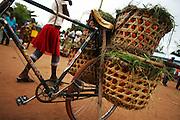 Bicycle loaded with tomatoes at Buhongwa market near Mwanza, Tanzania on Monday December 14, 2009.