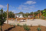 Farming Ranch in Aliso Viejo