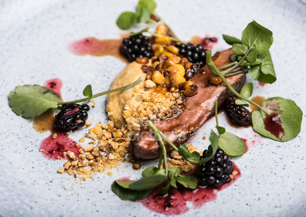 Creedy Carver duck/sweet corn/pickled blackberries/watercress at 'Salon' in Brixton<br /> Picture by Daniel Hambury/Stella Pictures Ltd 07813022858<br /> 11/09/2017