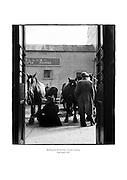 Ballinasloe Horse Fair, County Galway.<br /> <br /> 25th April 1957<br /> 25/04/1957