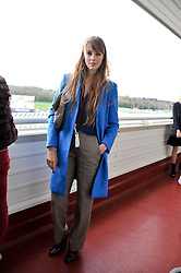 EDIE CAMPBELL at the Hennessy Gold Cup at Newbury Racecourse, Berkshire on 26th November 2011.