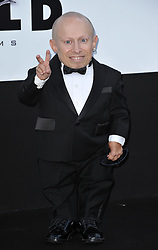 File photo - Verne Troyer attends the amfAR's Cinema Against AIDS during the 62nd Cannes Film Festival. Hotel du Cap, Cap d'Antibes, France, May 21, 2009. Verne Troyer, who is best known for playing Mini-Me in the Austin Powers films, has died at the age of 49. Troyer, who was 81cm tall, also played Griphook in the first Harry Potter film. Photo by Lionel Hahn/ABACAPRESS.COM (Pictured: Verne Troyer)