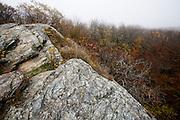 Savoy Mountain State Park, Massachusetts