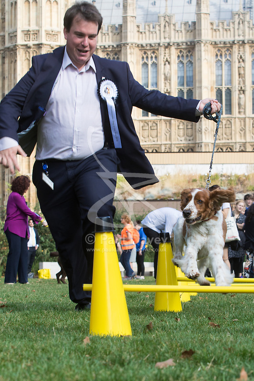 MPs and members of the House of Lords bring their pooches to Parliament as they compete to be crowned The Dogs' Trust and The Kennel Club's Westminster Dog Of The Year. PICTURED: Craig Williams MP (Conservative) Cardiff North and his Welsh springer spaniel Winston.
