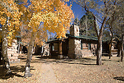 Aspen Treein fall, Lodge, North Rim, Grand Canyon, Arizona