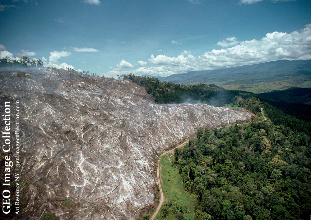 Aerial view of clear cutting on a mountain side.