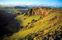 Islande - Vik - Dyrholey