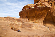 Zedane al-Zalabieh, owner and manager of the Bedouin Meditation Camp, sleeps below the Um Frouth Arch in Wadi Rum, Jordan.