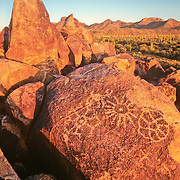 Petroglyph in Saguaro National Park. Tucson, Arizona