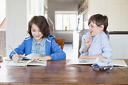 Girl and boy doing their homework, smiling