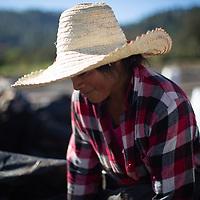 Consuelo, part of a coffee team at the COMSA coop, Marcala, Honduras