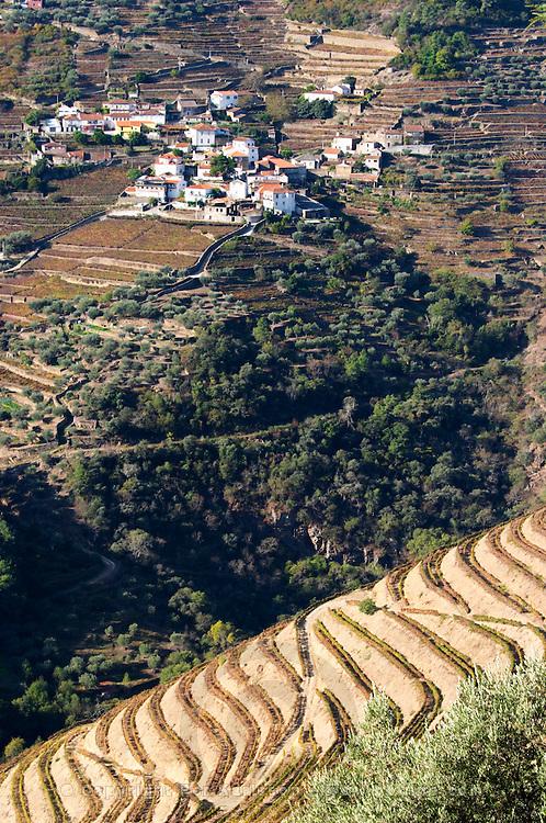 vineyards view to sao cristovao do douro quinta do noval douro portugal