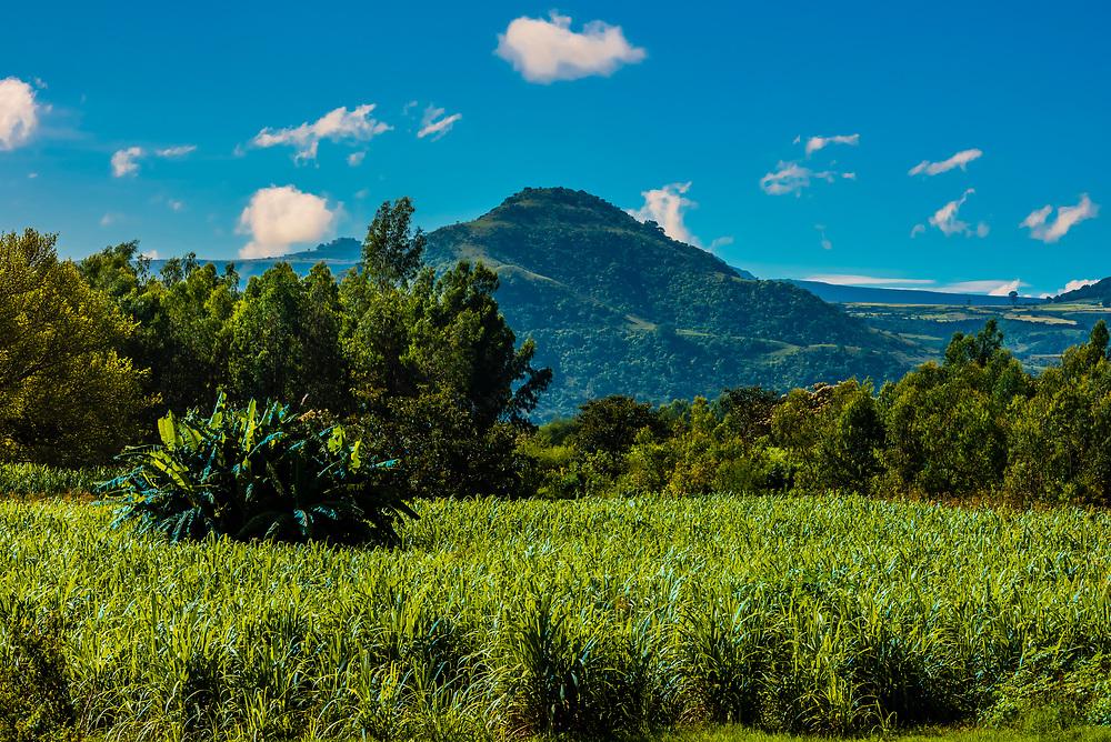 Agriculture, Amhara Region, Ethiopia.