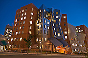 Stata Center at MIT, Cambridge, MA by Frank Gehry, architect.