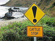 "Funny orange-yellow sign with exclamation point ! ""CATTLE STOP"", on South Island, New Zealand."