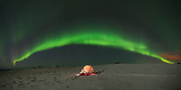 Northern lights shine over tent in winter, Vestvågøy, Lofoten Islands, Norway