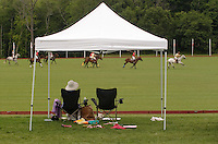 Town of Wallkill, NY - A woman watches a polo match at the Blue Sky Polo Club on Aug. 19, 2007.