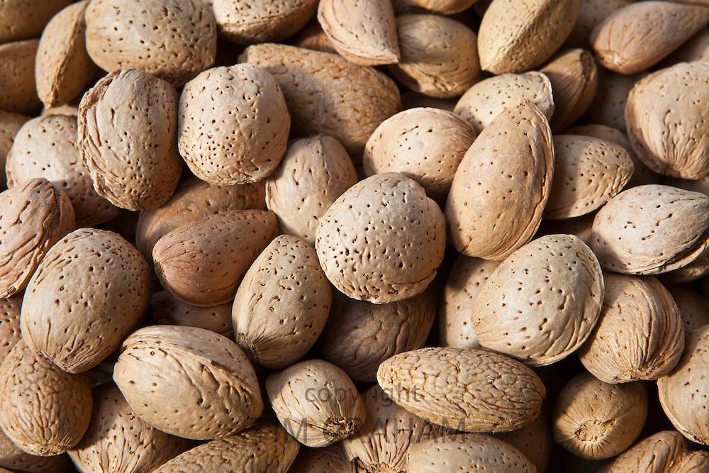 Fresh almonds