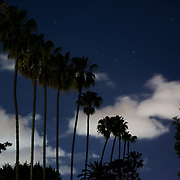 Eerie nightime shot of row of palm trees and racing clouds on Maryland St as a storm clears.
