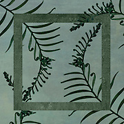 Collage with Cycas palm leaves and geometric elements