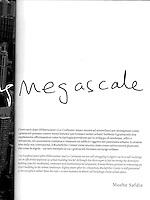 """""""Humanizing Megascale"""""""