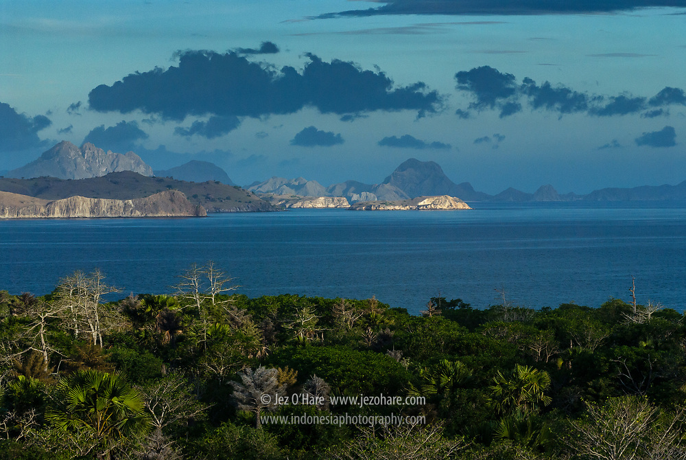 Komodo & Padar Islands, Manggarai Barat, Flores, Nusa Tenggara Timur, Indonesia