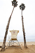 United States, California, Santa Barbara, Lifeguard Tower on the beach surrounded by two California Fan Palms
