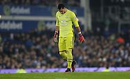 Joel Robles of Everton during the English Premier League match at Goodison Park, Liverpool. Picture date: December 19th, 2016. Photo credit should read: Lynne Cameron/Sportimage