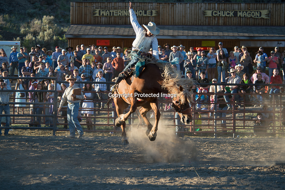 Native American Doug Hall in the saddle bronc riding event at the Upper Yellowstone Roundup Association rodeo in Gardiner, Montana on the northern border of Yellowstone National Park.