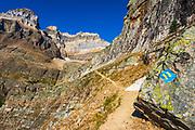 Trail marker on the Yukness Ledges Trail above Lake O'hara, Yoho National Park, British Columbia, Canada