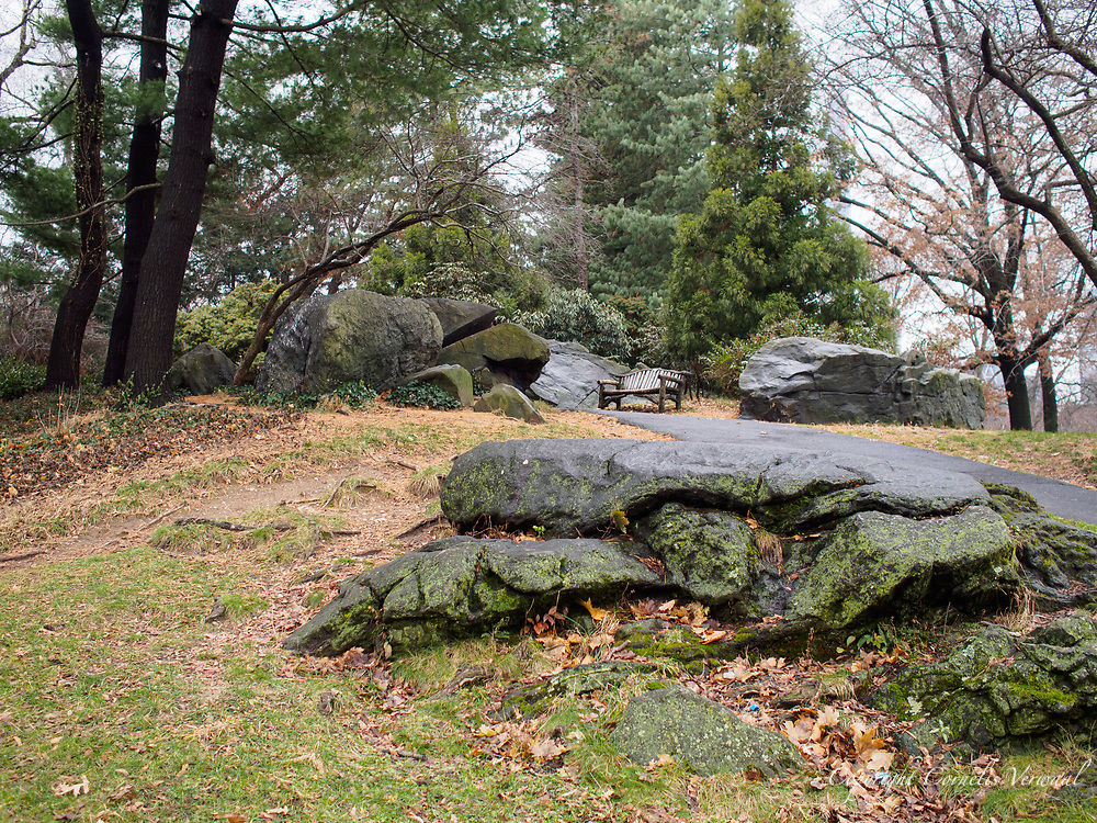 Hilly area and rustic bench along the path from the Boathouse restaurant towards Bethesda Terrace