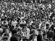 """07 MARCH 2015 - NAKHON CHAI SI, NAKHON PATHOM, THAILAND: The crowd at the Wat Bang Phra tattoo festival. Wat Bang Phra is the best known """"Sak Yant"""" tattoo temple in Thailand. It's located in Nakhon Pathom province, about 40 miles from Bangkok. The tattoos are given with hollow stainless steel needles and are thought to possess magical powers of protection. The tattoos, which are given by Buddhist monks, are popular with soldiers, policeman and gangsters, people who generally live in harm's way. The tattoo must be activated to remain powerful and the annual Wai Khru Ceremony (tattoo festival) at the temple draws thousands of devotees who come to the temple to activate or renew the tattoos. People go into trance like states and then assume the personality of their tattoo, so people with tiger tattoos assume the personality of a tiger, people with monkey tattoos take on the personality of a monkey and so on. In recent years the tattoo festival has become popular with tourists who make the trip to Nakorn Pathom province to see a side of """"exotic"""" Thailand.   PHOTO BY JACK KURTZ"""