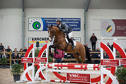 014, Nestor De Mariposa<br /> 3de phase BWP Keuring - Stal Hulsterlo - Meerdonk 2016<br /> © Hippo Foto - Dirk Caremans<br /> 19/03/16