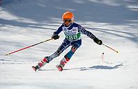 Piche Invitational Paul Ladouceur Championship slalom U12 boys  1st run.    ©2019 Karen Bobotas Photographer