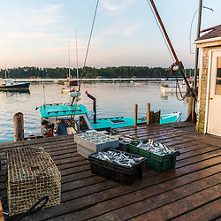 Lobster bait on the wharf at the Friendship Lobster Co-op in Friendship, Maine.