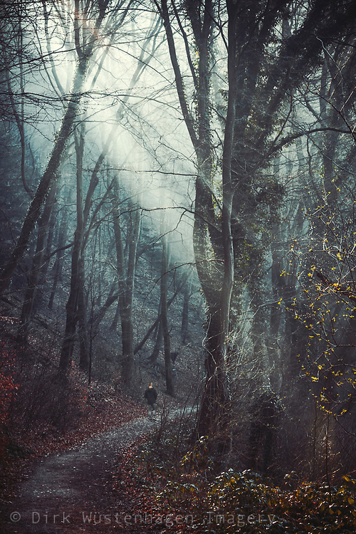 Man walking alone on a forest path in morning light