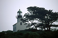 Old Point Loma Lighthouse (c.1854) and pine tree in fog, Cabrillo National Monument, San Diego, California