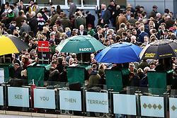 Racegoers soak up the atmosphere on St Patrick's Thursday at Cheltenham Racecourse